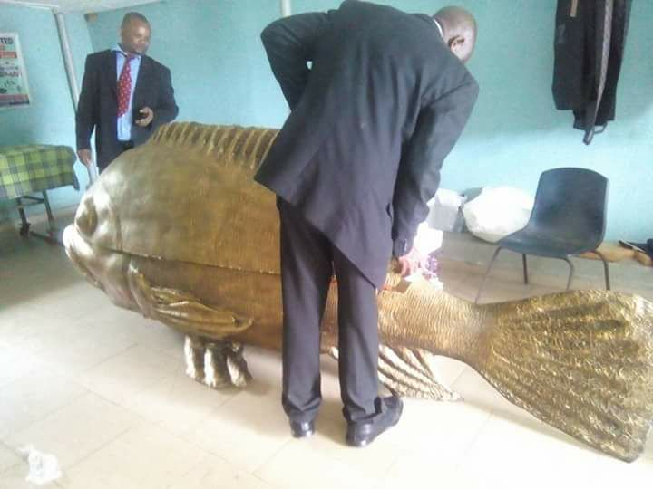 fish-coffin4.jpg